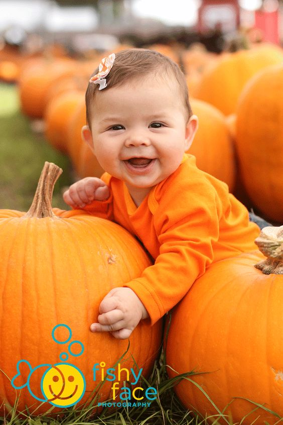 Fishy Face Photography: Pumpkin Patch Season Is here!