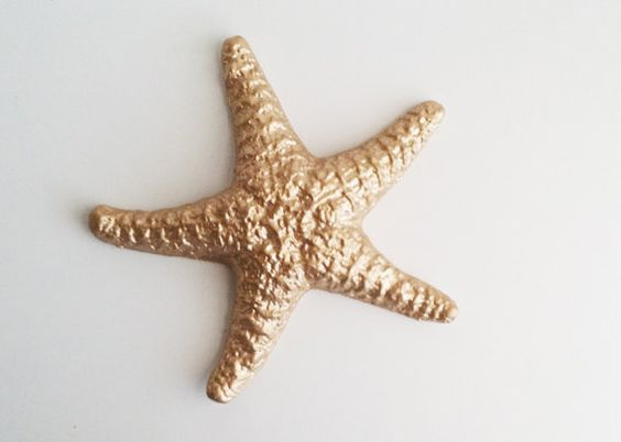 Gold Starfish Wall Decor : Starfish home and beach houses on