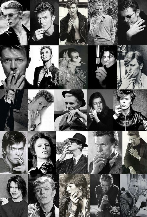 some of the many faces of David Bowie: