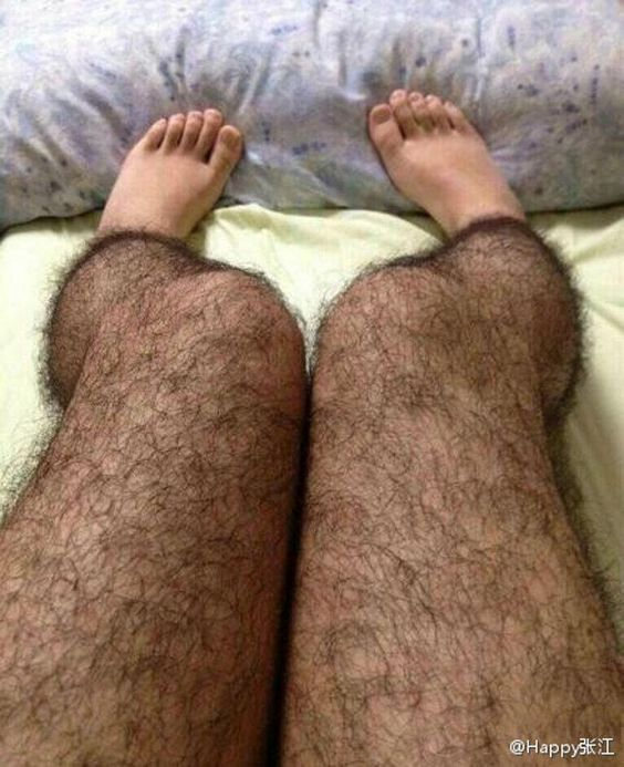 Um..someone in my family will be getting this for Christmas this year! Hairy leggings!!! Great gag gift!!!: