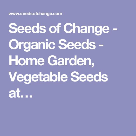 Seeds of Change - Organic Seeds - Home Garden, Vegetable Seeds at…