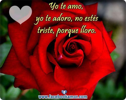 Tarjetas De Amor Con Rosas Rojas