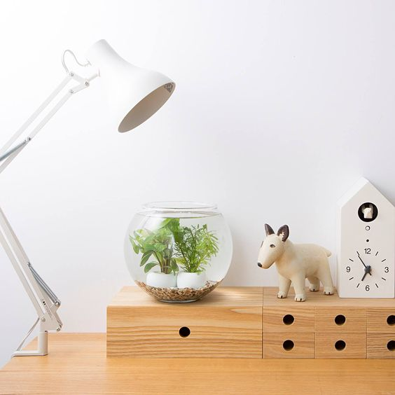 *MUJI 無印良品 MDF drawers, cuckoo clock, light