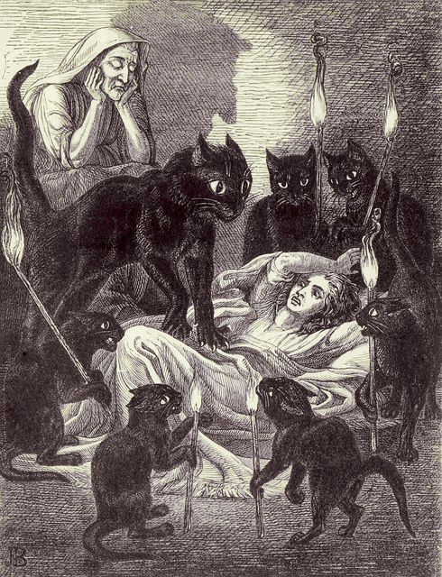 Cats Guarding the sick Witch - Leonard's Dream | from The Lances of Lynwood by Charlotte Mary Yonge, 1855 | illustration by Jane Blackburn: