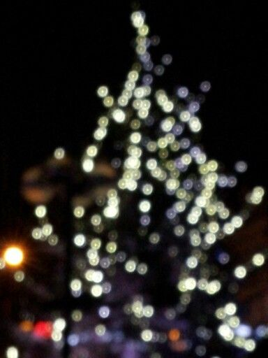 A picture I took some years ago, the lights are composed in a shape of a Christmas tree