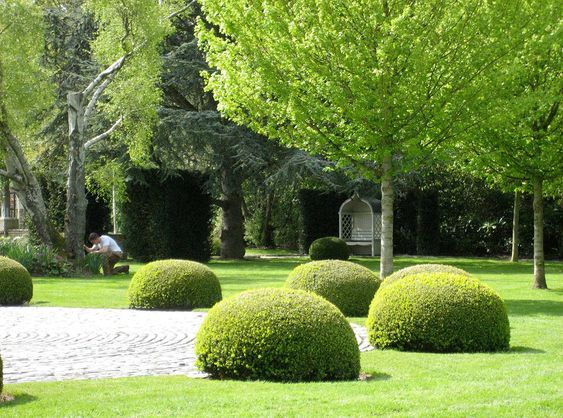 Bernard Hickie Garden & Landscape Design