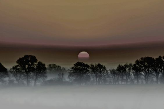 Sonnenaufgang im Nebel von Holger Maack