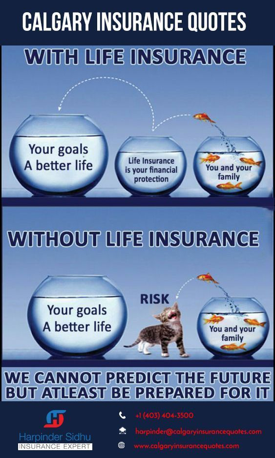 Excellent No Cost Still Looking For The Right Health Insurance Check Best Health Insurance Now Thoughts The Most Effect Life Insurance Agent Life Insurance Quotes Best Health Insurance