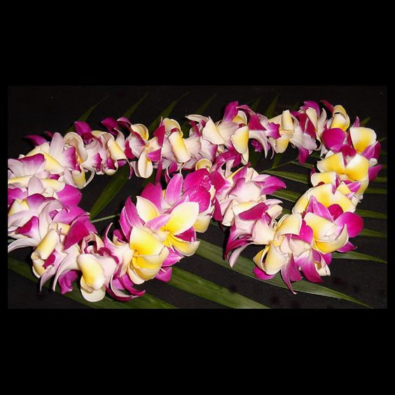 how to make a plumeria lei