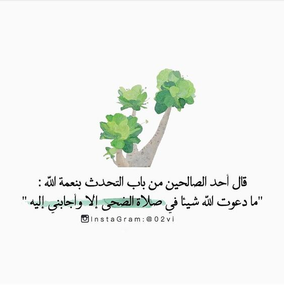 صلاة الضحى Islamic Quotes Wallpaper Islam Facts Wise Words Quotes