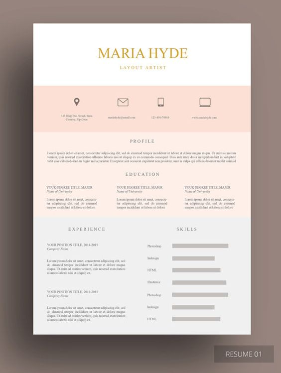 resume resume templates and pink beige on