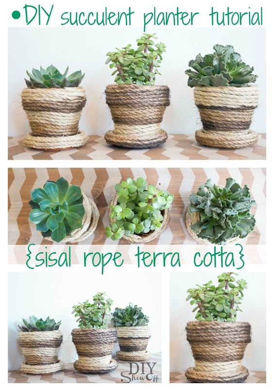 DIY Show Off Succulent Planters, Planters and Sisal Rope