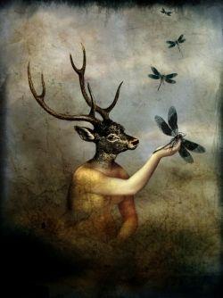 Giclee Prints - Catrin Welz-Stein