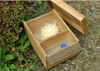 Bumblebee nest box | Bees | Pinterest | Boxes, Nests and ...