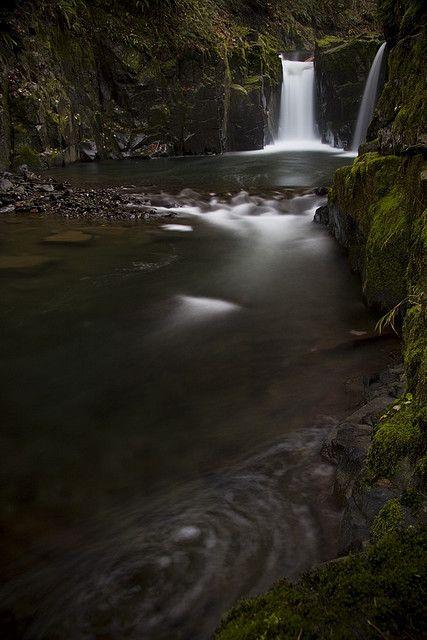Haines Falls,Washington County, Oregon
