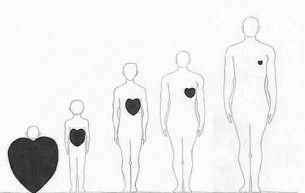 Children's hearts are the biggest.