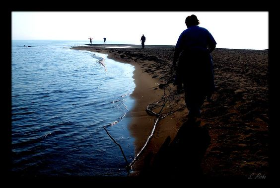 Walking the Shore, Point Pelee