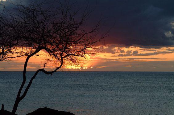 Maui Sunset  photo by drmannysousa