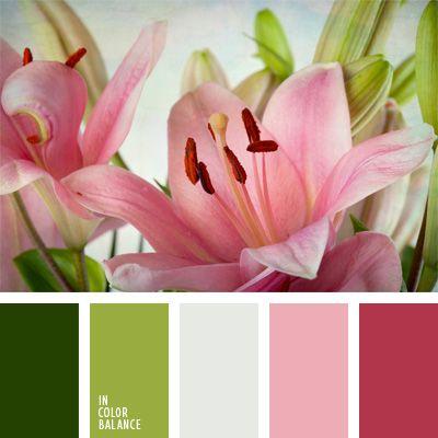 color lila rosado, colores de azucena, colores para la decoración, elección del color, paletas de colores para decoración, paletas para un diseñador, rosado y verde lechuga, tonos claros, tonos pastel de colores verde y rosado, tonos rosados y verdes.