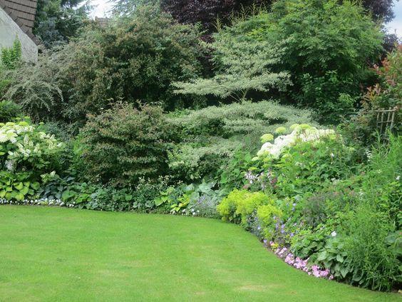 Jardin ombre mixed border garden inspiration pinterest for Amenagement jardin ombre