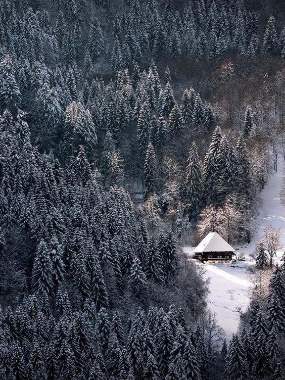 .Schwarzwald