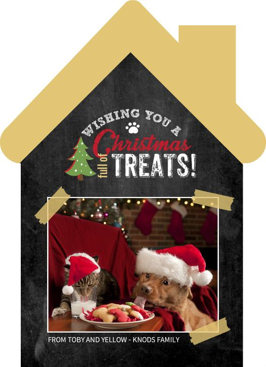 Christmas Full Of Treats Pet Photo Card by PurpleTrail.com. Plus ...