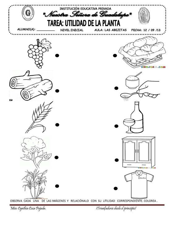Page 6 En 2020 Tecnologia Para Ninos Ciencia Preescolar