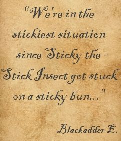 """""""We're in the stickiest situation since Sticky the stick insect got stuck on a sticky bun..."""" ― Captain Blackadder, Blackadder Goes Forth"""