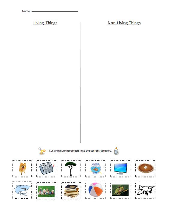 Worksheets Living Vs Nonliving Worksheet collection of living vs nonliving worksheet sharebrowse delibertad