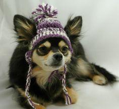 Dog hat with ear holes free crochet pattern google - Dog hat knitting pattern free ...