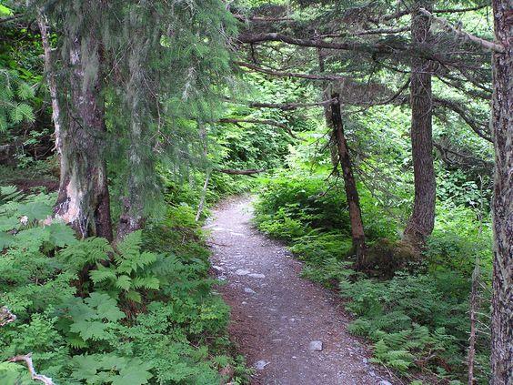 St. Robert Mountain, Juneau AK