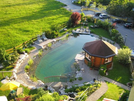 Swimming pond landscaping pinterest backyard ponds for Koi pond natural swimming pool