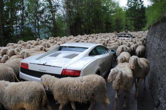 スイスの渋滞の様子。
