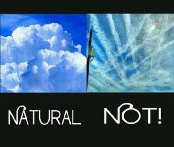 Chemtrails - here's a great article that PROVES chemtrails are not a conspiracy theory!! They are real and Congress approved them! Unfreakinbelievable! Throw them out!!! https://www.berkeleydailyplanet.com/issue/2010-02-04/article/34608: