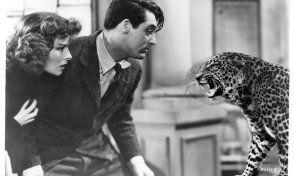 Bringing Up Baby, a screwball comedy with Cary Grant, Katharine Hepburn, and a leopard....what's not to love :)