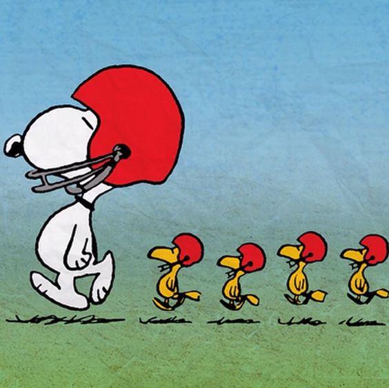 Sunday football!: