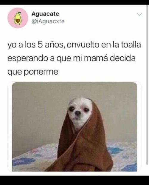 Mas Imagenes En Http Videowhatsapp Net Visitalo Para Ver Todas Las Categorias Https Www Facebook Com 1 Memes Quotes Funny Spanish Memes Mexican Funny Memes