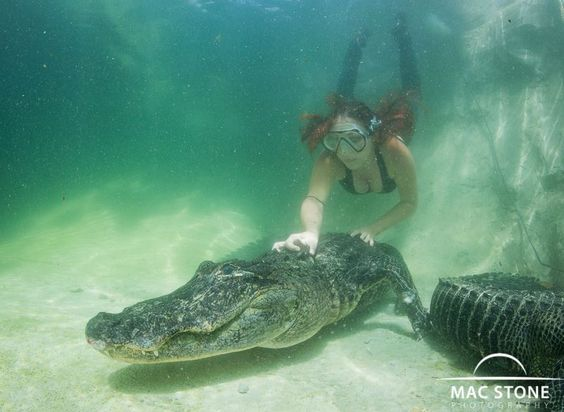 """Ashley Lawrence, who also stars on """"Gator Boys,"""" is the exception to every rule. During the week she sizes her 4'11"""" frame up to massive alligators, she handles venomous snakes"""