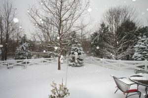 A snow day's surprising gifts. Robyn Porter, REALTOR, Washington DC metro area real estate, #homes 703-963-0142