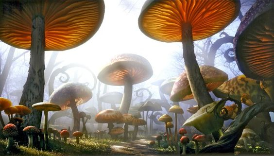 I hate that mushrooms are associated with fairies and all that tacky enchanted stuff. Because I love them!