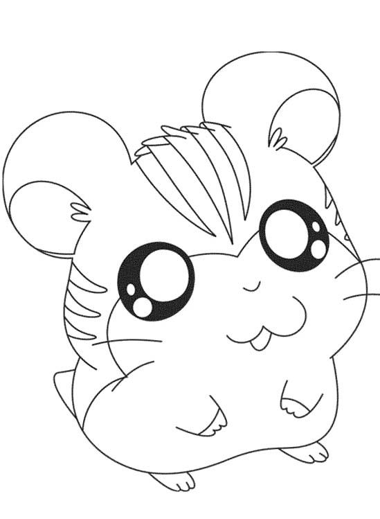 Cute Sandy Coloring Pages Hamtaro