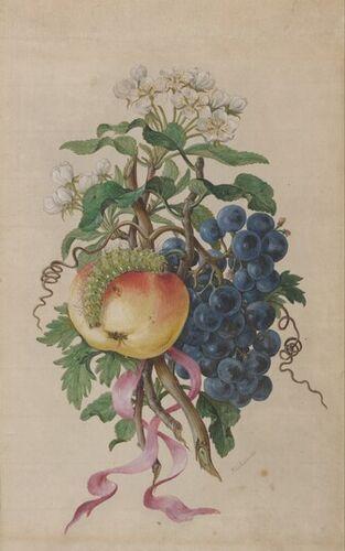 Josef Kriehuber, Stillleben (Trauben-Äpfel und Raupe), 1822 © Albertina, Wien