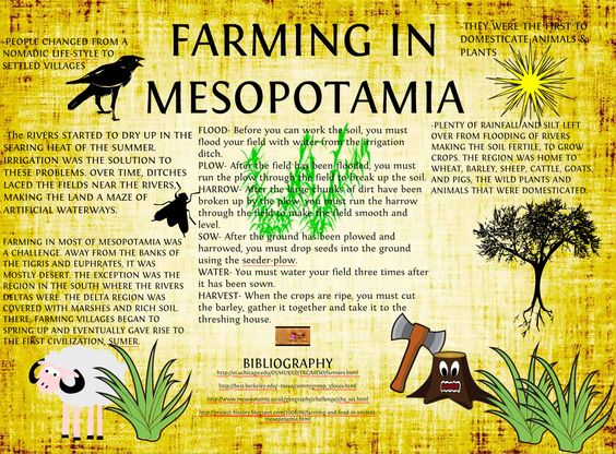 Use math to learn about the problems faced by farmers in ancient Mesopotamia. PBL project for 6th grade. $