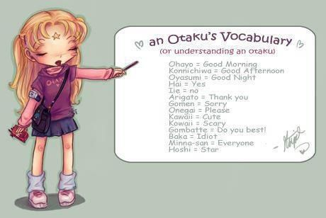 Yep...or you could just learn Japanese. Then you would know a true otaku's complete vocabulary...