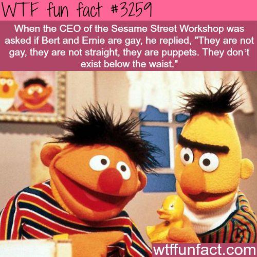 Wtf Gay 112