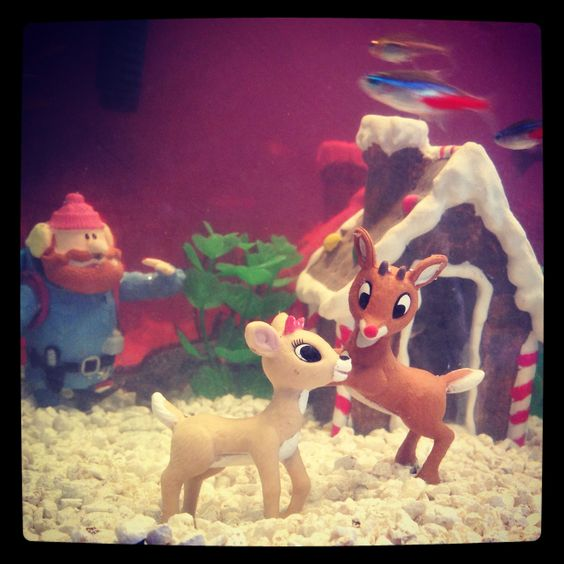 Toys seals and fish tanks on pinterest - Fish tank christmas decorations ...