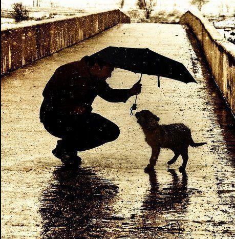 So Touching ...