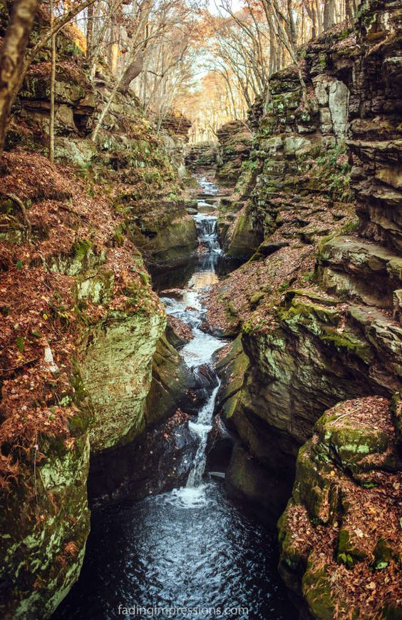 Pewit's Nest: Wisconsin's secret swimming hole that's surrounded by waterfalls. (Camping/Fishing Trips)