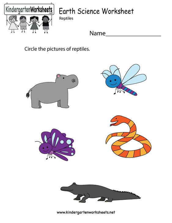 math worksheet : kindergarten earth science worksheet printable  science  : Online Worksheet For Kindergarten