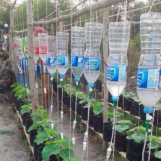 "Aritra Sarkar på Instagram: ""When #doctors go for #gardening"""